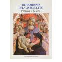 Bernardino del Castelletto, Pittore a Massa